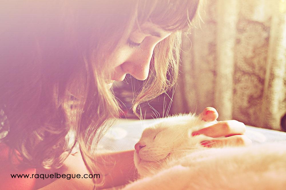 gatos-amor-incondicional