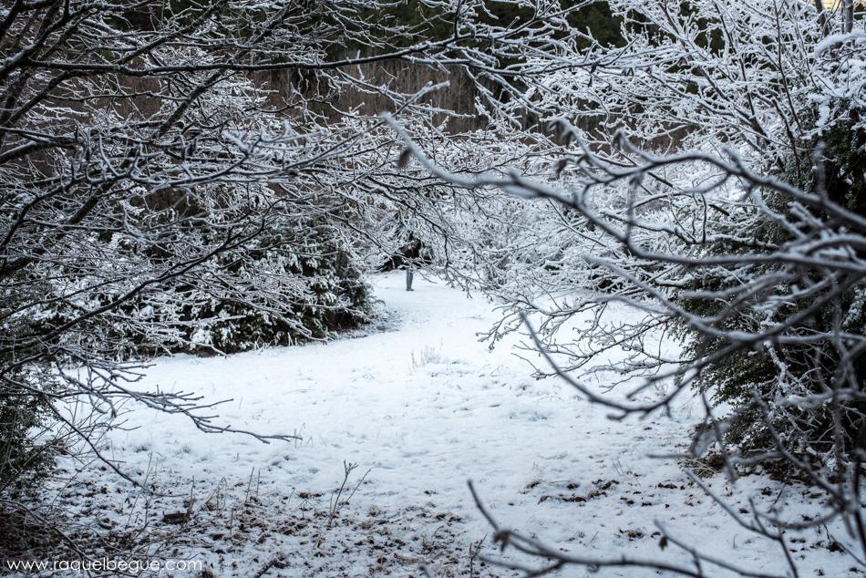Nieve Aigüestortes